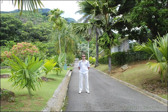 Сейшелы, Виктория, ботанический сад