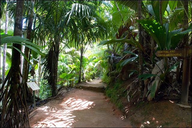 Сейшелы - Майская долина