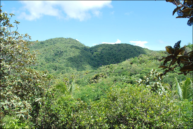 Майская долина